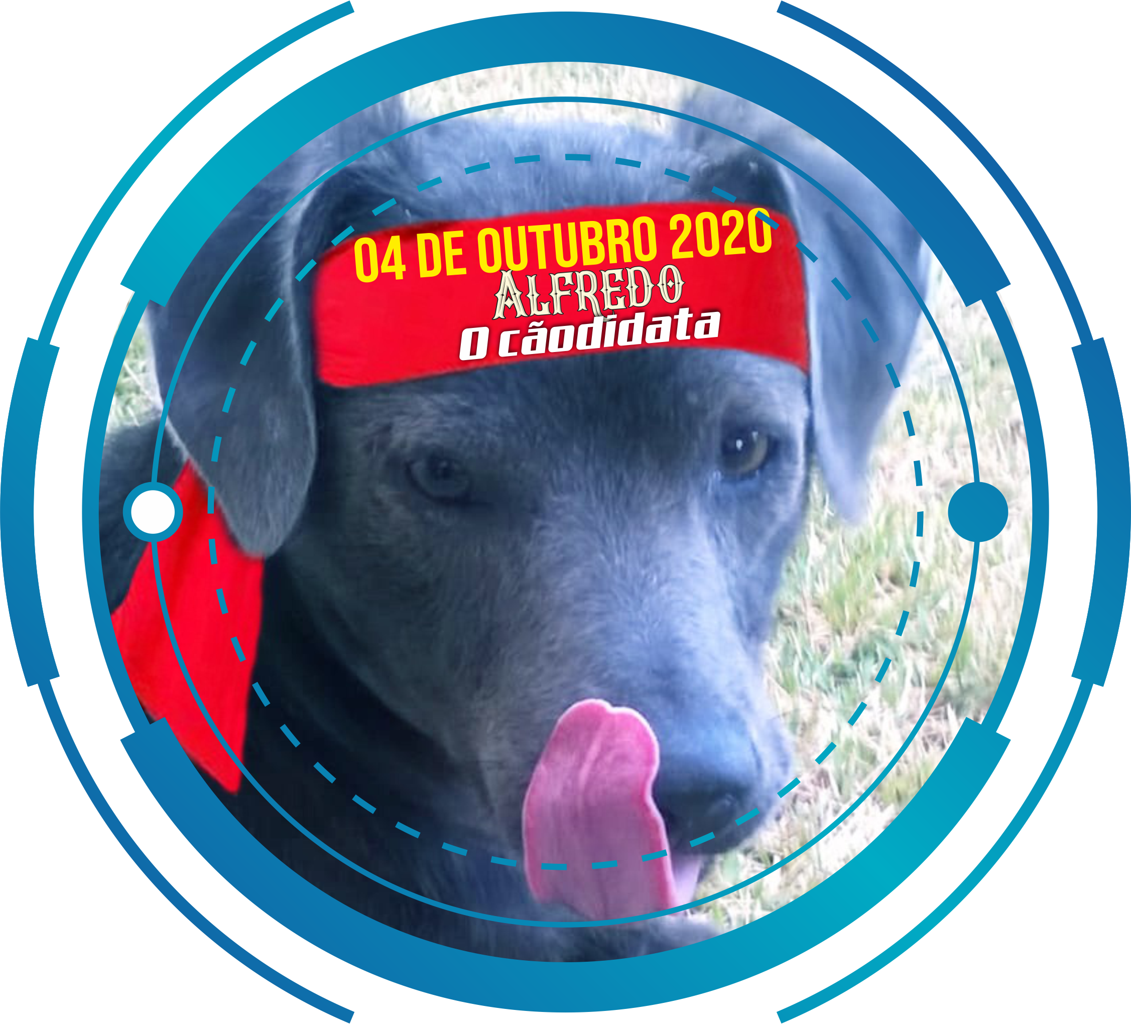 Alfredo, o Cãodidata está de olho nos Prefeitáveis, nos candidatos a Prefeito e nos candidatos a Vereador