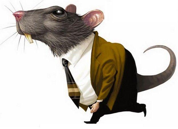 Por trás de TUDO estão os RATÕES que tramam nos Bastidores...